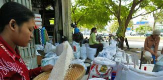 cambodian rice sector government stabilise protect