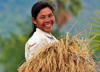 Cambodian Agro-Industry Federation