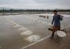 Salt Farmers Back In The Field