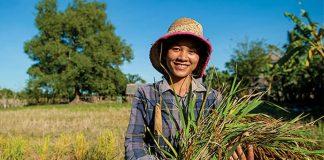 Cambodia Exports 2020